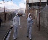 روحانیون مستقر شهرستان سلسله در خط مقدم خدمت به مردم در مقابله با ویروس کرونا